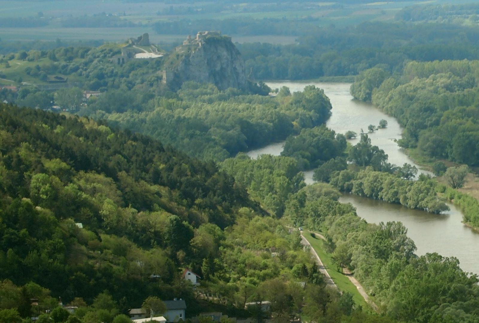 Devin Castel